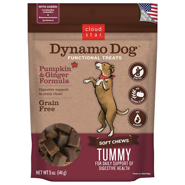 Cloud Star Dynamo Tummy Pumpkin & Ginger Dog Treats, 5 oz. - Carousel image #1