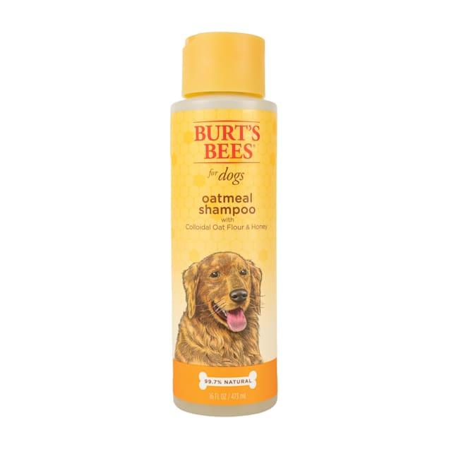 Burt's Bees Oatmeal Dog Shampoo, 16 fl. oz. - Carousel image #1
