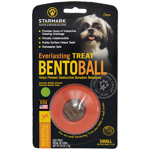 Starmark Everlasting Bento Ball with Dental Treat in Orange, Small - Carousel image #1