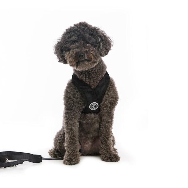 Gooby Choke Free Comfort X Soft Harness, Black, Large - Carousel image #1