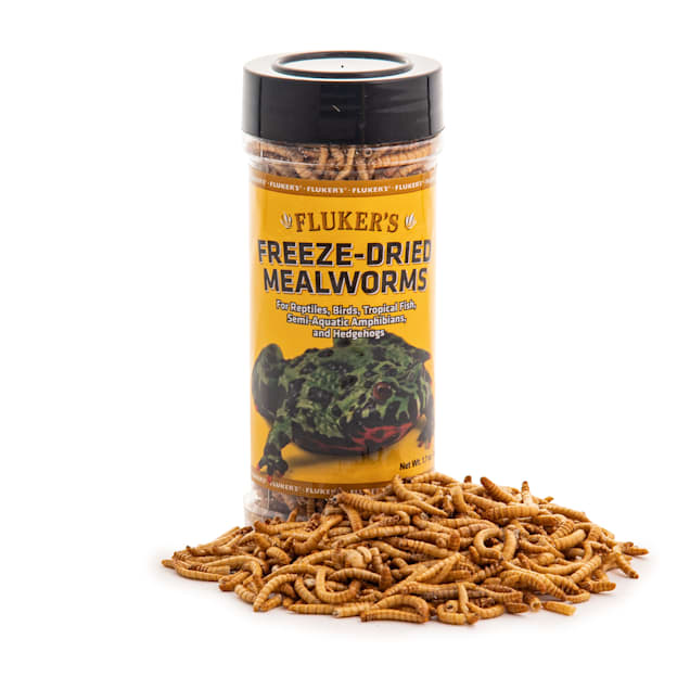 Fluker's Freeze-Dried Mealworms, 1.7 oz. - Carousel image #1