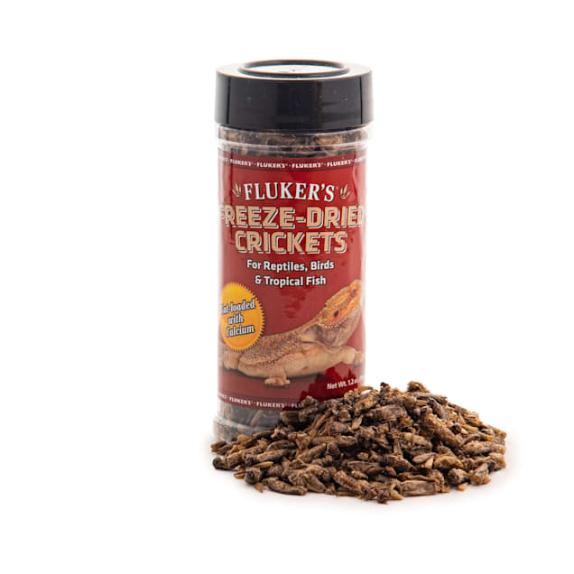 Fluker's Freeze-Dried Crickets, 1.2 oz. - Carousel image #1