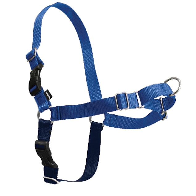 PetSafe Easy Walk Blue Dog Harness, Small/Medium - Carousel image #1