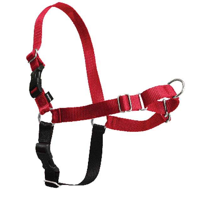 PetSafe Easy Walk Harness in Red, Medium/Large - Carousel image #1