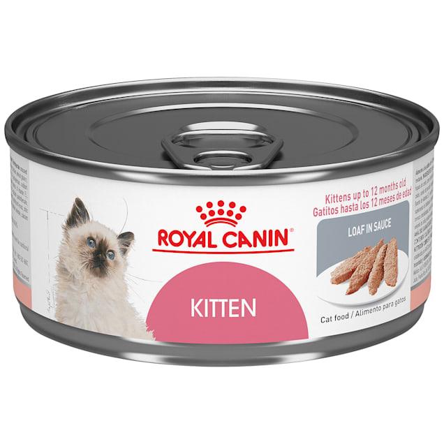 Royal Canin Feline Health Nutrition Loaf in Sauce Wet Kitten Food, 5.8 oz., Case of 24 - Carousel image #1