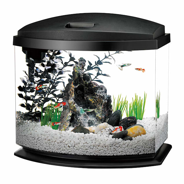 Aqueon 5 Gallon MiniBow LED Desktop Fish Aquarium Kit, Black - Carousel image #1