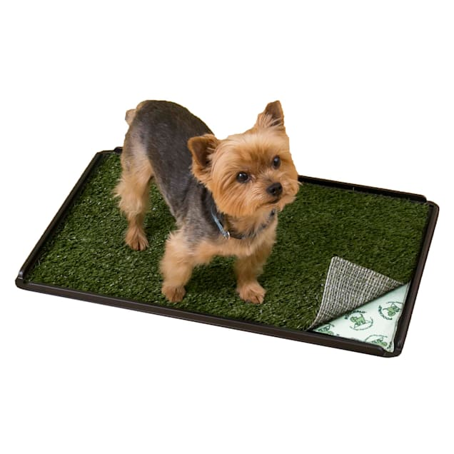 "PoochPads Indoor Turf Dog Potty Plus, For dogs up to 20 lbs., 24"" L X 16"" W X 1"" H - Carousel image #1"