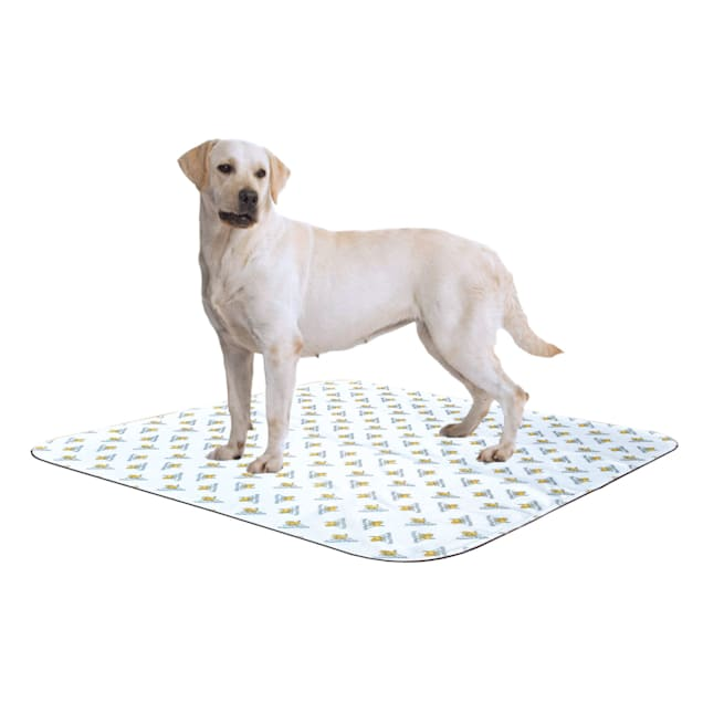 """PoochPads Reusable Dog Pad, 48"""" L X 48"""" W X .2"""" H, For Dogs 90-120 lbs. - Carousel image #1"""