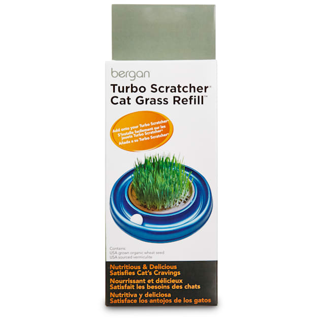 Bergan Turbo Scratcher Cat Grass Seed and Soil Refill - Carousel image #1