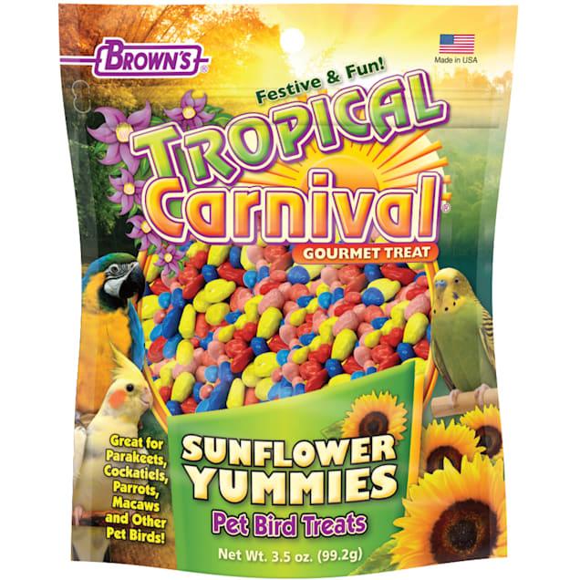 Brown's Tropical Carnival Sunflower Yummies Bird Treats, 3.5 oz. - Carousel image #1