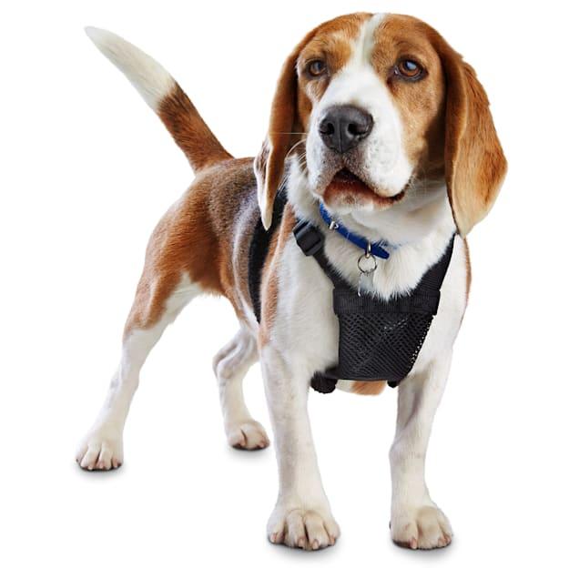 Good2Go Black No Pull Dog Harness, Large - Carousel image #1