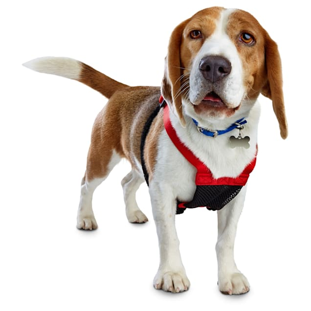 Good2Go Red No Pull Dog Harness, Large - Carousel image #1