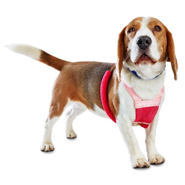 Good2Go Pink No Pull Dog Harness, Medium - Carousel image #1