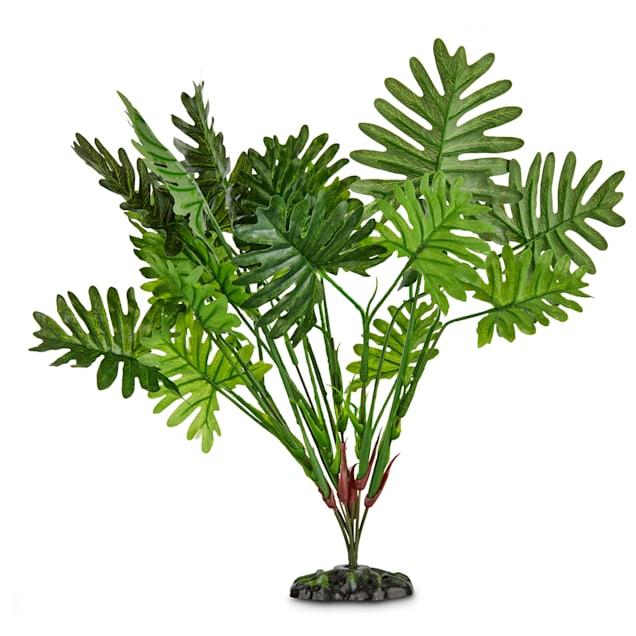 """Imagitarium Sago Palm Terrarium Plant, 15"""" L X 13"""" H - Carousel image #1"""