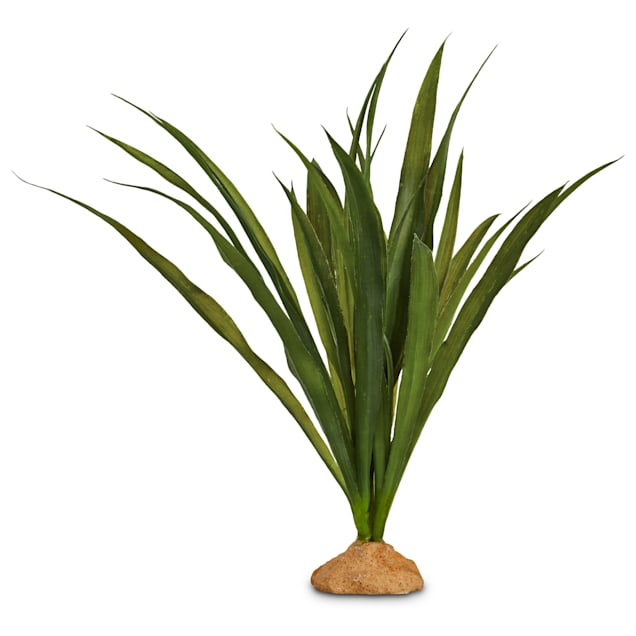 """Imagitarium Orchid Grass Terrarium Plant, 9"""" L X 13"""" H - Carousel image #1"""