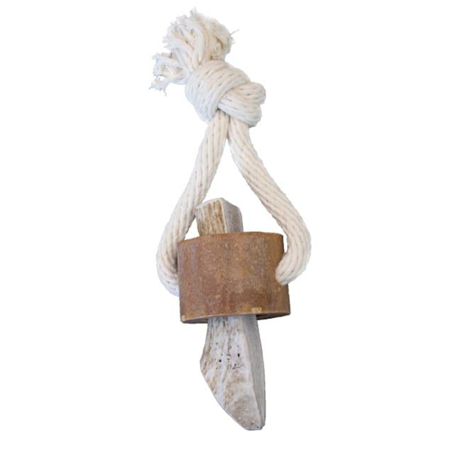 KONG Wild Antler Chew Treat Dog Toy, Medium - Carousel image #1