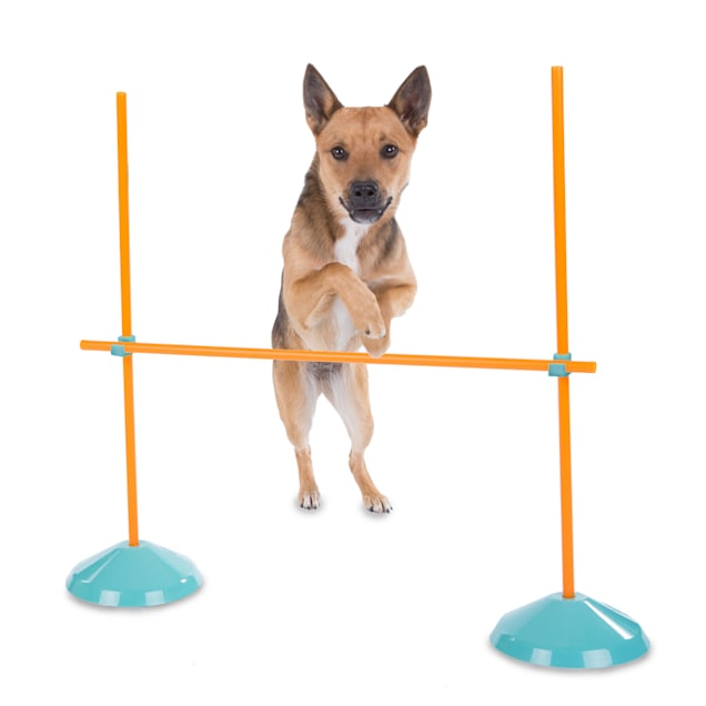 Outward Hound Indoor Dog Agility Kit - Carousel image #1