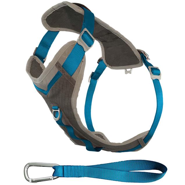 Kurgo Gray & Blue Journey Dog Harness, Large - Carousel image #1