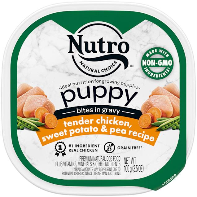 Nutro Bites in Gravy Tender Chicken, Sweet Potato & Pea Recipe Grain Free Wet Puppy Food, 3.5 oz., Case of 24 - Carousel image #1