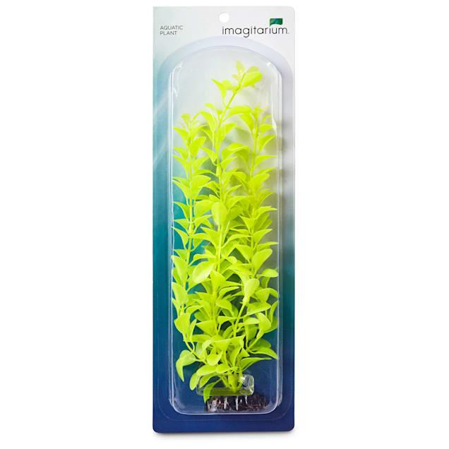 Imagitarium Light Green Background Aquarium Plant - Carousel image #1