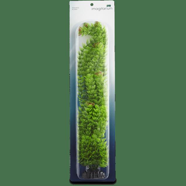 Imagitarium Extra Large Ambulia Green Plant - Carousel image #1