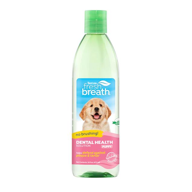 TropiClean Fresh Breath Dental Health Solution for Puppies, 16 fl. oz. - Carousel image #1