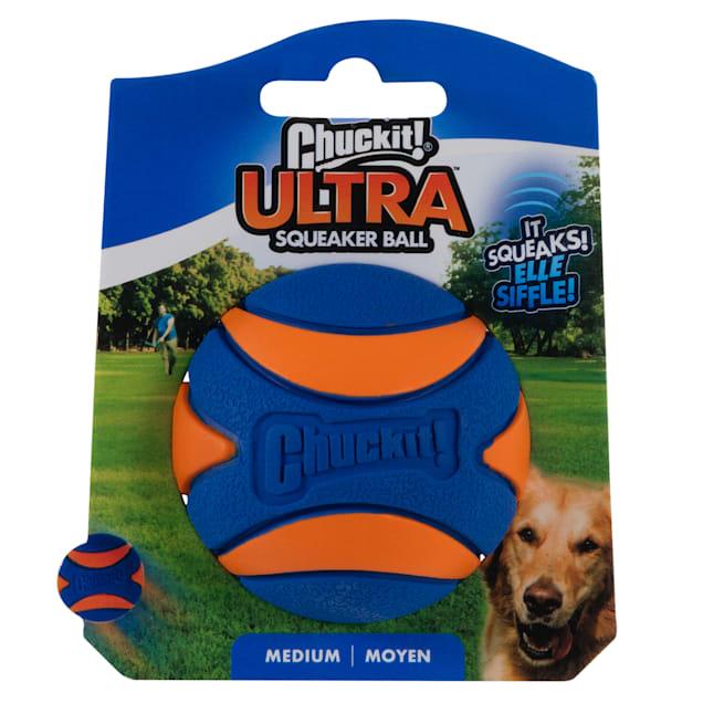 Chuckit! Medium Squeaker Ball Dog Toy - Carousel image #1