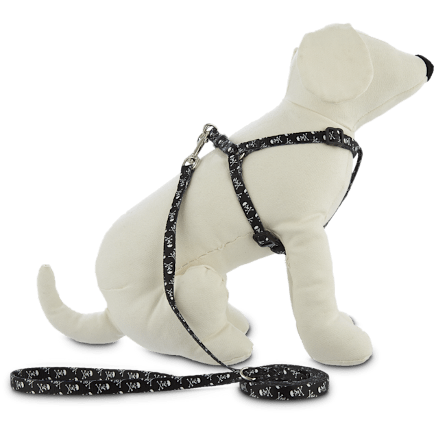 Bond & Co. Black Harness Lead Set - Carousel image #1