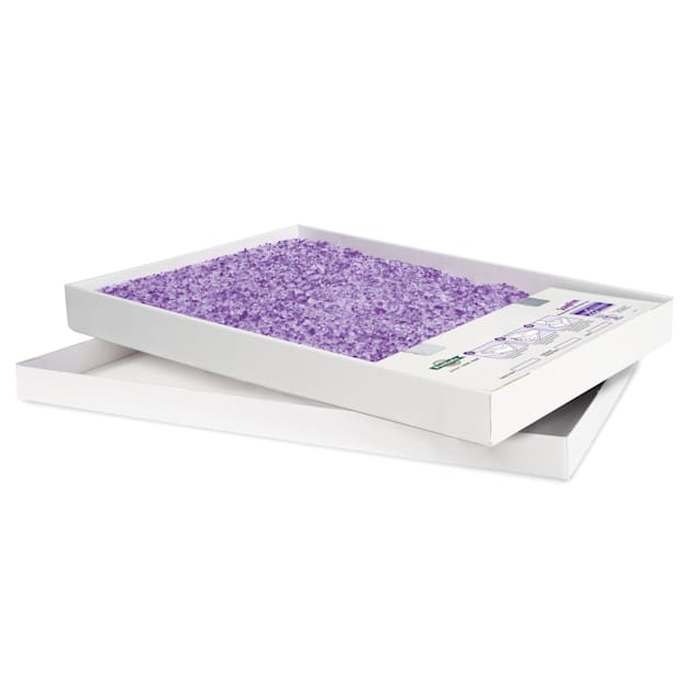 ScoopFree by PetSafe Disposable Crystal Lavender Litter Tray for Cats, 1.6 fl. oz., Pack of 1 - Carousel image #1