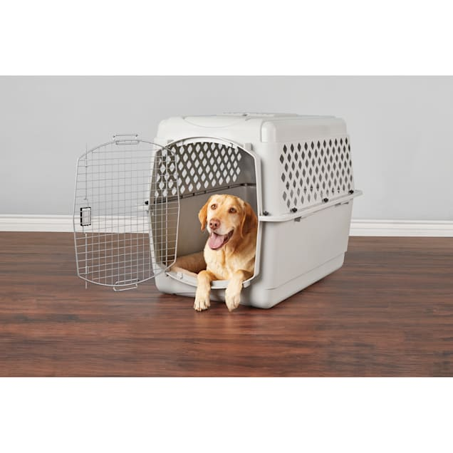 """EveryYay Going Places Pet Kennel, 40"""" L - Carousel image #1"""