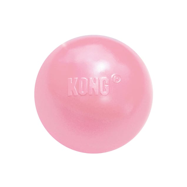 KONG Puppy Ball with Hole Assorted Toy, Small - Carousel image #1