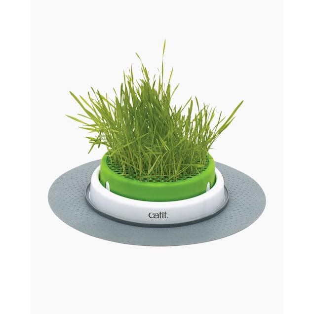 Catit Senses 2.0 Grass Planter Cat Toy - Carousel image #1
