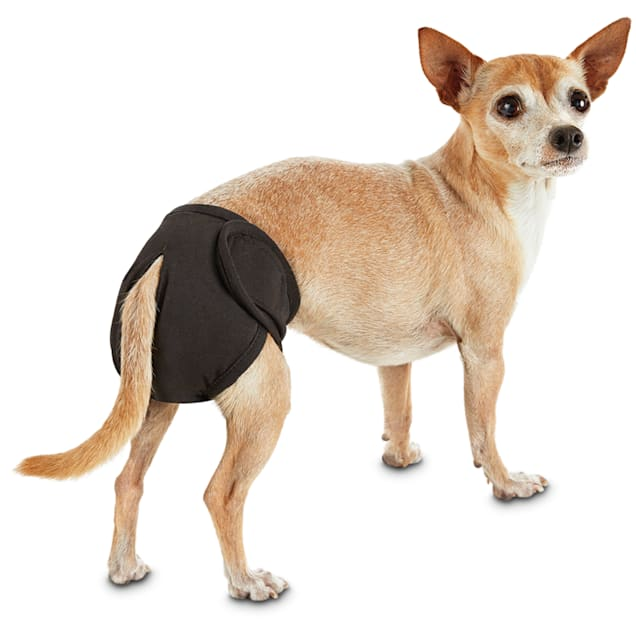 So Phresh Washable Diaper for Dogs, X-Small - Carousel image #1