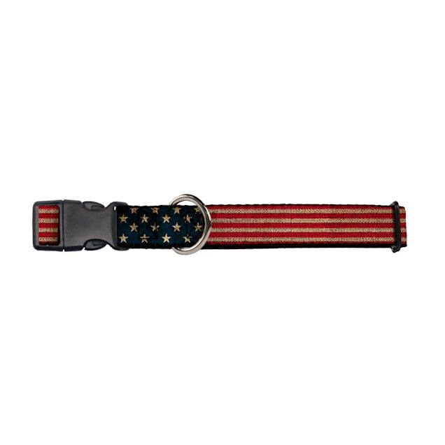 "Buckle-Down Americana Dog Collar, For necks 9""-15"" - Carousel image #1"