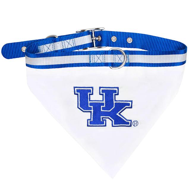 Pets First Kentucky Wildcats NCAA Dog Collar Bandana, Small - Carousel image #1
