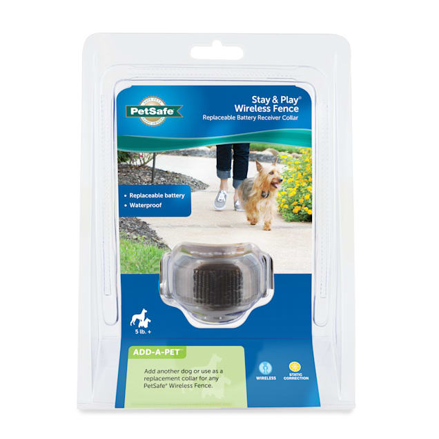 PetSafe Stay & Play Wireless Fence Replaceable Battery Receiver Collar for Dogs - Carousel image #1