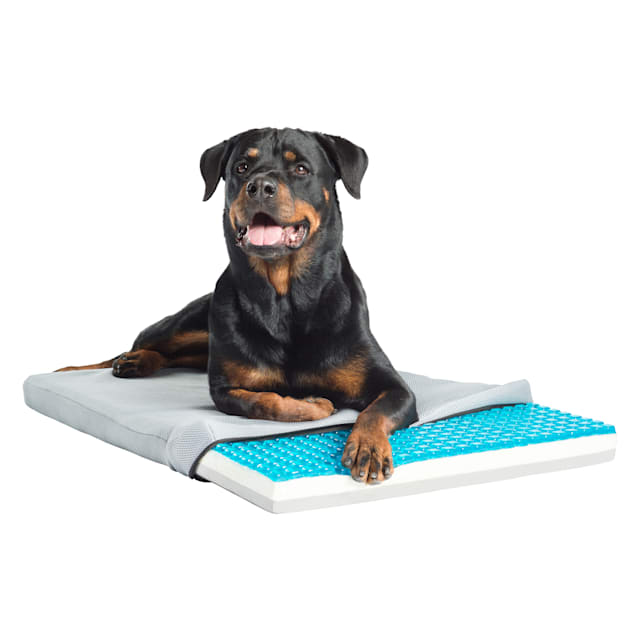 "Pet Therapeutics TheraCool Gel Cell Cooling Pad with Tricore Charcoal-Infused Memory Foam Pet Bed, 36"" L x 23"" W - Carousel image #1"