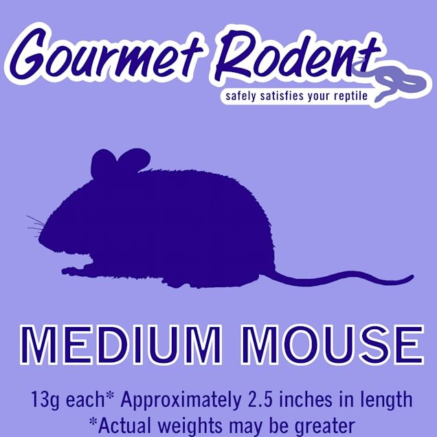 Frozen Medium Mouse, Count of 10 - Carousel image #1