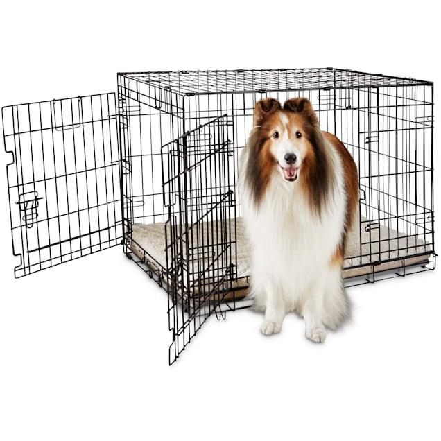 "You & Me 2-Door Folding Dog Crate, 36"" L x 23"" W x 24"" H - Carousel image #1"