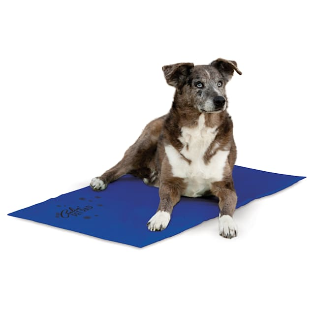 """K&H Cooling Pad for Dogs, 27""""L X 38""""W - Carousel image #1"""