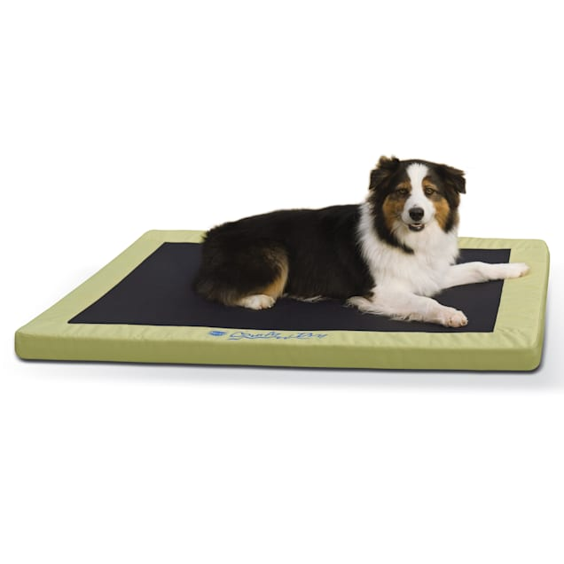 """K&H Green Comfy N' Dry Indoor/Outdoor Orthopedic Dog Bed, 48"""" L x 36"""" W - Carousel image #1"""