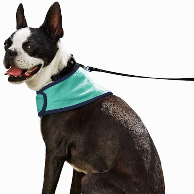 Good2Go Cooling Dog Bandana, Small/Medium - Carousel image #1