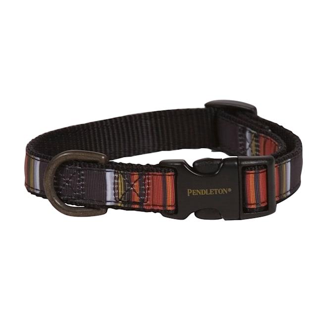Pendleton Acadia National Park Hiker Dog Collar, Large - Carousel image #1