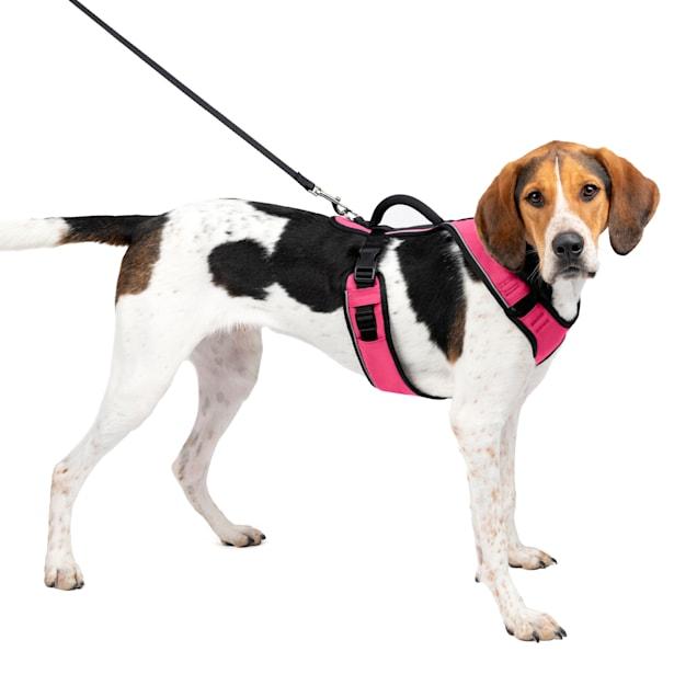 Petsafe EasySport Harness in Pink, Large - Carousel image #1