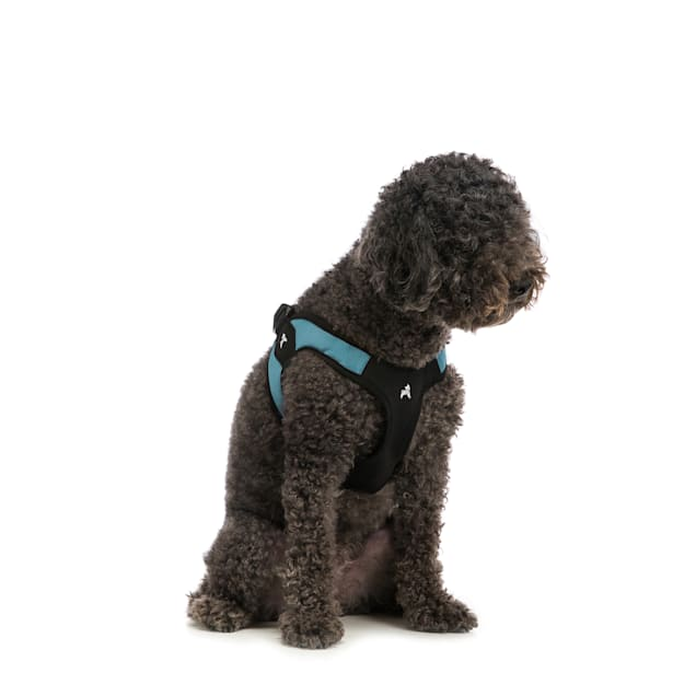 Gooby Escape Free Harness in Turquoise, Medium - Carousel image #1