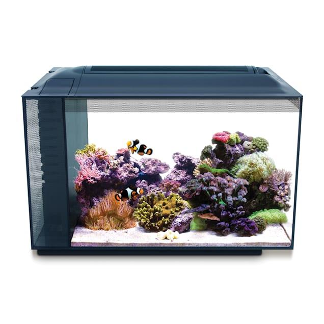Fluval 13.5 Gallon Evo XII Marine Aquarium Kit - Carousel image #1
