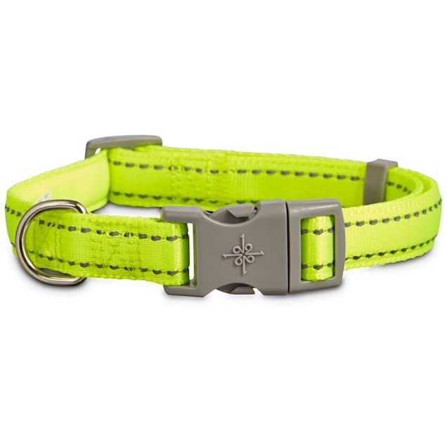 Good2Go Reflective Adjustable Padded Dog Collar in Yellow, Large/X-Large - Carousel image #1