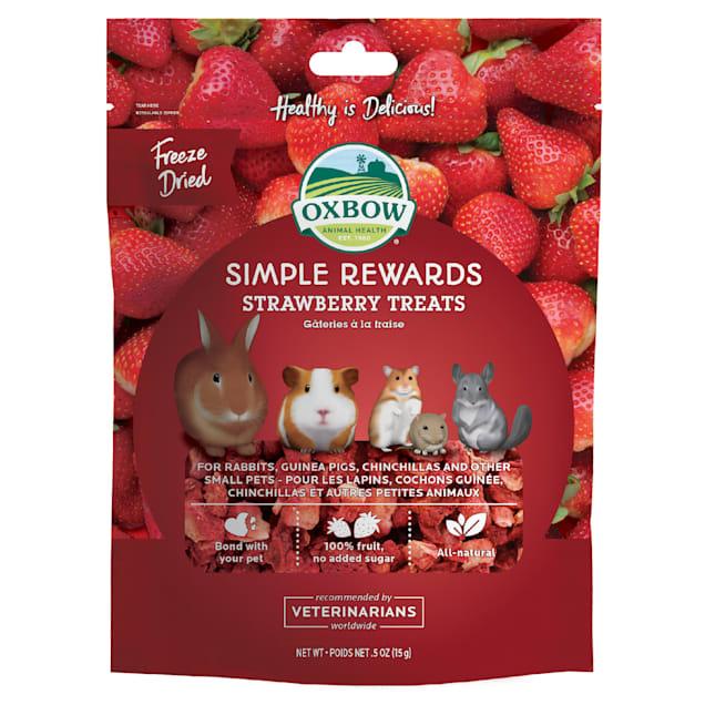 Oxbow Simple Rewards Strawberry Small Animal Treats, 0.5 oz. - Carousel image #1