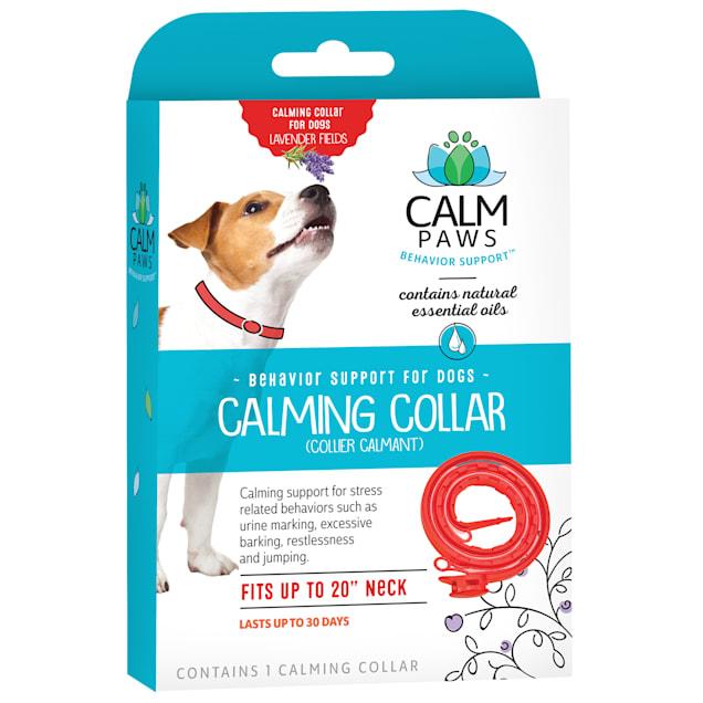 Calm Paws Dog Calming Collar - Carousel image #1