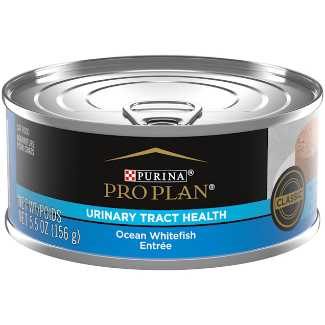 Purina Pro Plan Focus Adult Urinary Tract Health Formula Ocean Whitefish Entree Classic Wet Cat Food, 5.5 oz. Can - Carousel image #1